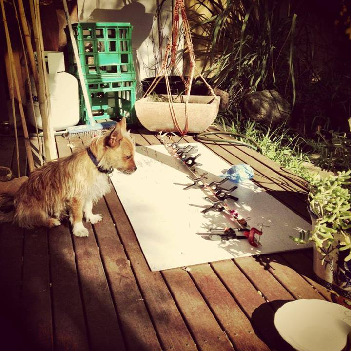 """Glue time- the hound diligently """"helped"""" me through the whole process"""
