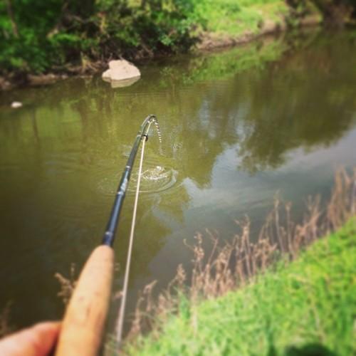 Fish on :)